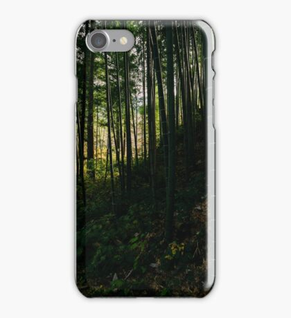 Kiso Valley Shadows iPhone Case/Skin