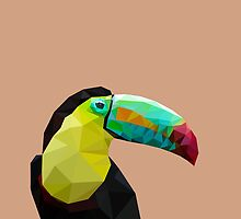 LP Toucan by Alice Protin