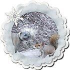Geordie likes squirrels by Sandra Caven