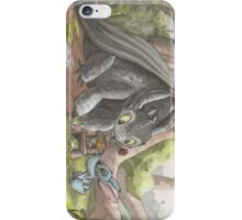 Toothless and Stitch Build a Froghouse iPhone Case/Skin