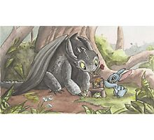 Toothless and Stitch Build a Froghouse Photographic Print