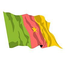 Cameroon Flag Photographic Print