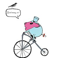 PiGgy riding a penny-farthing by Cat-Igrun