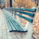 Central Park Bench by Edward Fielding