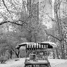 Central Park Vendor by Edward Fielding