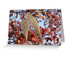 Pampas Grass in Fall Greeting Card
