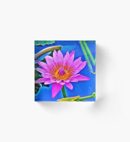 Water Lily Acrylic Block