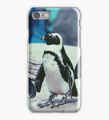 Penguins On The Rocks iPhone Case/Skin