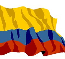 Colombia Flag by kwg2200