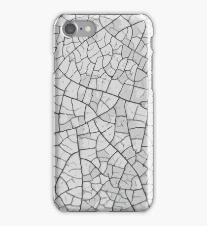 Earth Texture iPhone Case/Skin
