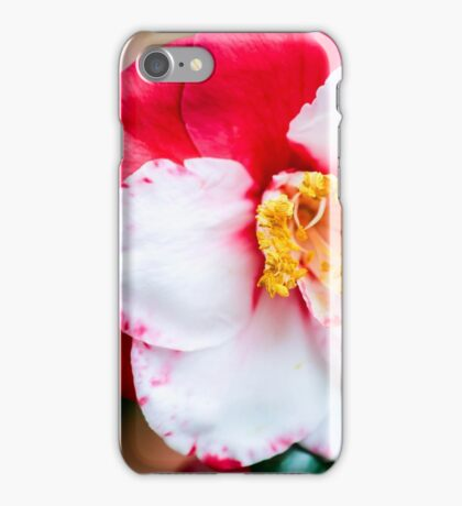 Red and White Camellia Flower iPhone Case/Skin