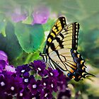Yellow Swallowtail Butterfly by Kathy Weaver