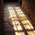Last Light by Linda Hardt