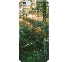 Forest Sunbeams at Golden Hour iPhone Case/Skin