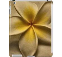 ~paramnesia~ iPad Case/Skin