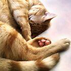 Toe beans by Christina Brundage