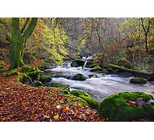 The Birks of Aberfeldy  Photographic Print