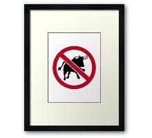 No bulls Framed Print