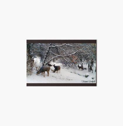 Deer in a lovely winter scene - Roxborough Park - Colorado Art Board