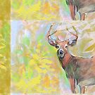 Stag by Sarah Butcher