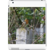 Robin and Barbed Wire iPad Case/Skin