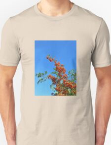 Reach for the sky! Profusion of Berries T-Shirt