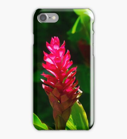 Alpinia flower iPhone Case/Skin