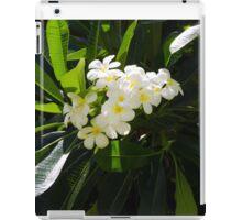 Frangipani (plumeria) flower iPad Case/Skin