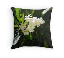 Frangipani (plumeria) flower Throw Pillow