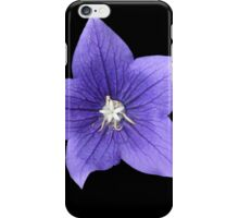Pretty Little Purple Balloon Flower iPhone Case/Skin