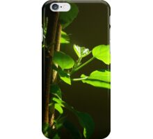 The Houseplant iPhone Case/Skin