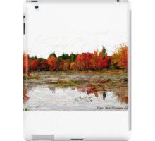 Fall in Northern Ontario iPad Case/Skin