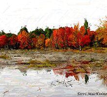 Fall in Northern Ontario by Terri Mackinnon-Cross