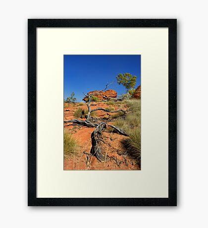 Northern Territory Landscape 25 Framed Print