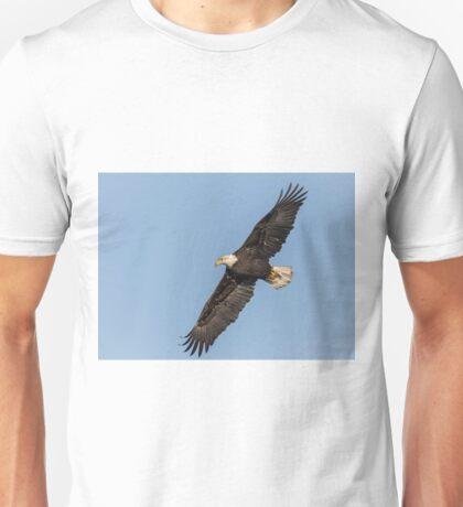 American Bald Eagle 2017-13 Unisex T-Shirt