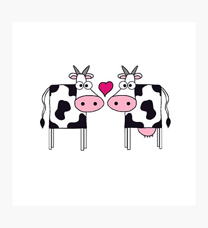 Cows In Love Cow T Shirt Men Photographic Print