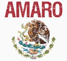 Amaro Surname Mexican by surnames