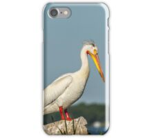 Portrait Of An American White Pelican iPhone Case/Skin