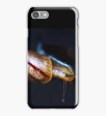 Stripey Coloured Snail iPhone Case/Skin