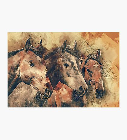 Beautiful horse portraits watercolor painting Photographic Print