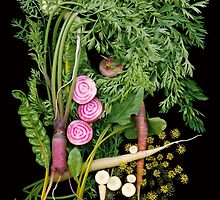 Rhythm and Roots Veggies by Ellen Hoverkamp