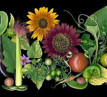 THBG Youth Garden Souvenirs by Ellen Hoverkamp