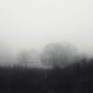 Visit Silent Hill, they said. It'll be fun, they said. by ElDave