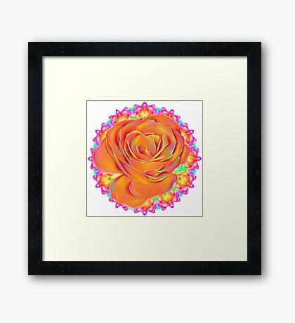 Psychedelic Rose Mandala  Framed Print