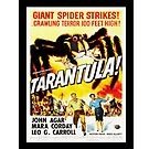 Tarantula! (1955) - Vintage Movie Poster by 45thAveArtCo