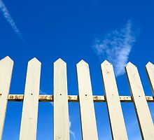Picket Fence by Leonie Leivenzon