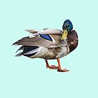 What's up Duck!!! by Catherine Hamilton-Veal  ©
