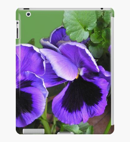 Cheeky faces - Pansy Viola iPad Case/Skin