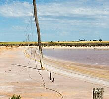 Old Power Line by Colin  Ewington