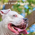 BSL Sux! by Zdogs